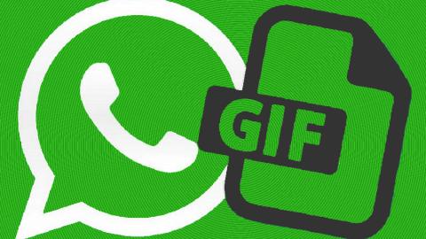 WhatsApp si aggiorna su iOS con le GIF
