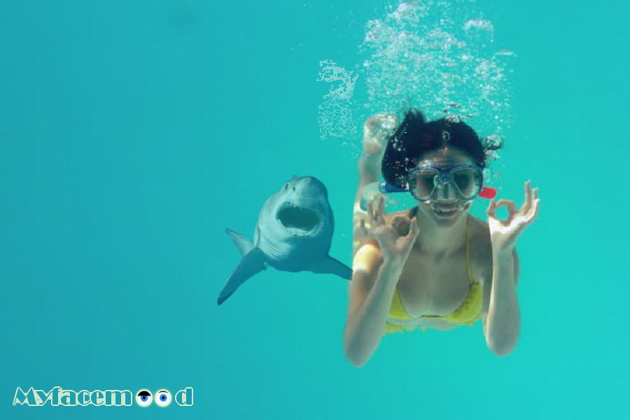 Myfacemood - KiteSurf un drone cattura delle immagini terrificanti di uno squalo bianco!