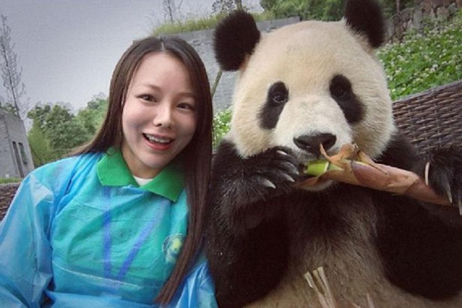 Myfacemood - Questo Panda fotogenico ha talento per i selfie!