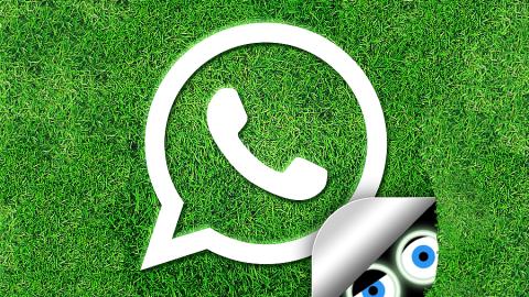 WhatApp: Video integrati nel profilo!