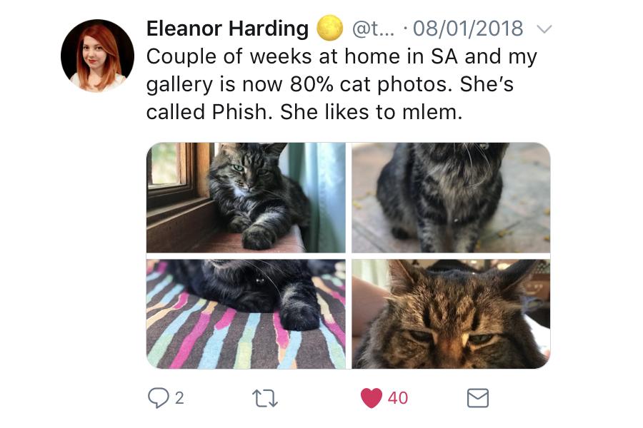 Myfacemood - Twitter usa il ritaglio intelligente per le anteprime delle immagini